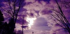 photostudio_1550616460864