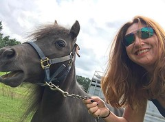 It's #loveyourpet day! Shout out to #spiketheminihorse for always giving us a huge laugh! #ilovehorses #loveyourpetday #miniaturehorsesofinstagram #miniaturehorse #wardstables