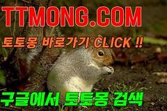 [토토몽]온라인바카라 먹튀검증사이트사다리사이트 검증완료크라운주소 업체프로토