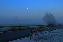 La mañana fresquita con algo de niebla