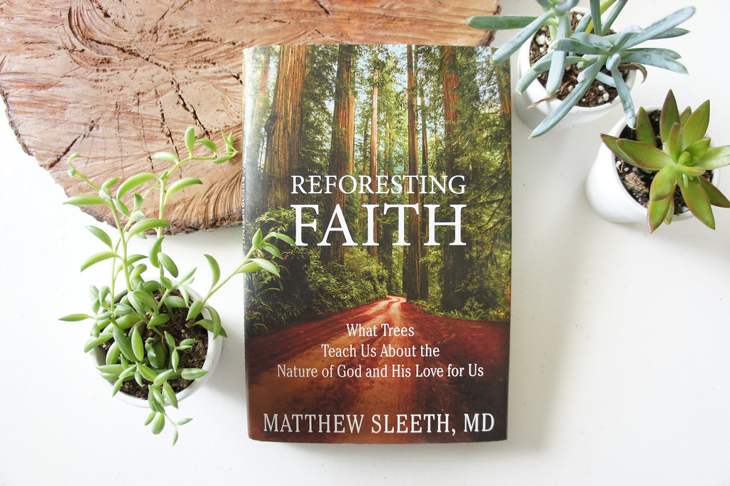 On World Earth Day: What Trees Reveal About God, Faith