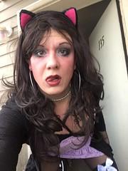 Stefani Slutty