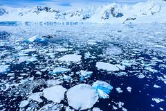 Antarctica-111125-1132