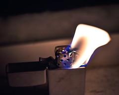 The warm glow of night burns around us all.