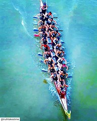 Great overhead shot of the @ohdbc.premierwomen when they were competing in Szeged. Definitely #womencrushwednesday 💪  @truthtakestime . . . #dragonboat #dragonboating #dragonboatlife #dragonboatrace #dragonboatfestival #drachenboot #paddling #paddl