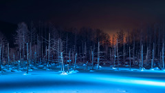 Blue Pond01.jpg