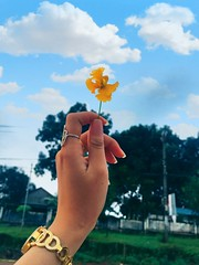 - The first picture #hyy #picture #love #me #day #hand #arm #flower #yellow #sky #green #blue #girls #ring