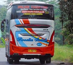 Rosalia Indah HDD 545 | Legacy SR-2 HD Prime ECE R66 Custom | HIN RK8JSKA-NHJ R260